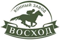Конный завод Восход, продажа лошадей